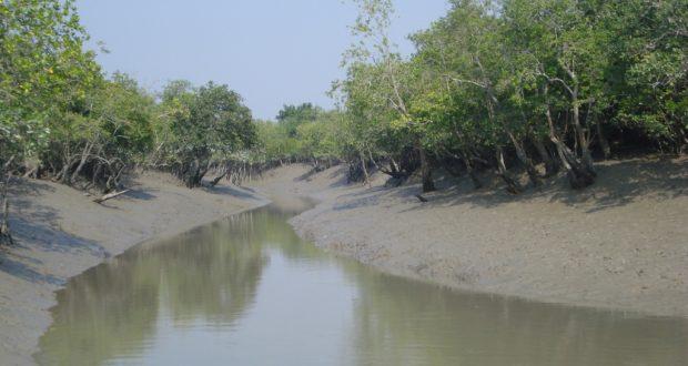 উপকূলবাসীর সুপেয় পানির চাহিদা মেটাতে সুন্দরবনে ৮৮টি পুকুর পুনঃখনন করা হচ্ছে