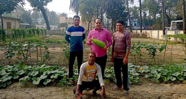সুনামগঞ্জ মডেল থানায় ওসি সহিদুরের নিজ উদ্যোগে ফুলের বাগান ও সবজি চাষ